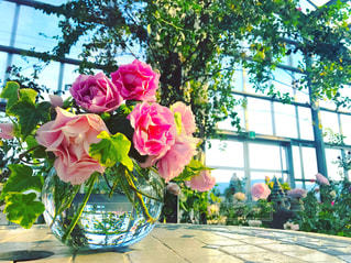 紫色の花一杯の花瓶の写真・画像素材[992650]
