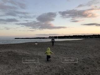 子ども,犬,海,親子,夕焼け,散歩,パパ,パパの背中