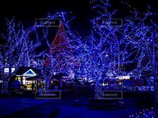 空,冬,カメラ,夜,イルミネーション,ライトアップ,クリスマス,Sky,winter,illumination,evening,Xmas,season