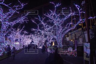 自然,空,屋外,東京,TOKYO,イルミネーション,旅行,旅,クリスマス,color,illumination,tour,lights,tourism