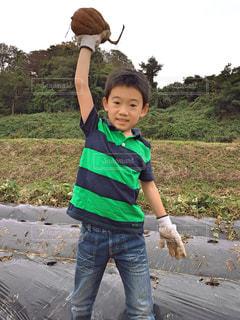 芋掘り - No.1159674