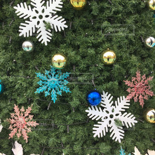 クリスマス,クリスマスツリー,結晶