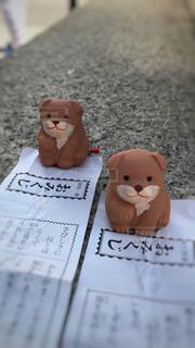 初詣で犬おみくじの写真・画像素材[965958]