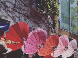 風景,傘,屋外,赤,可愛い,天気,色,紙,キレイ,紙傘