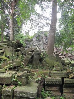 カンボジアの遺跡の写真・画像素材[1843413]