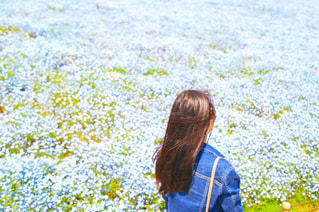 春,屋外,青,後ろ姿,景色,女の子,少女,人物,背中,人,後姿,ブルー,地面,ネモフィラ,ひたち海浜公園,草木,あおぞら