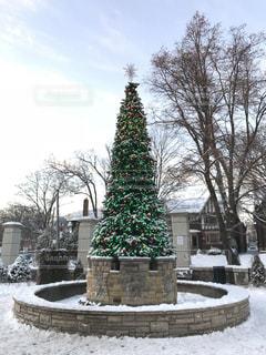 冬,雪,クリスマス,ツリー,Merry Christmas!,空キレイ
