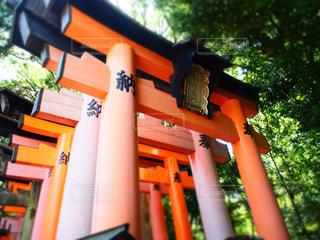 京都の写真・画像素材[177093]