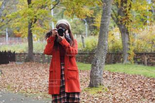 森の横に立っている人の写真・画像素材[851600]