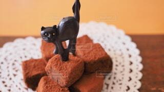 猫と生チョコ🐈⬛🐾の写真・画像素材[4193931]
