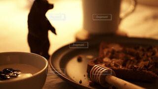 食べ物,カフェ,コーヒー,屋内,パン,トースト,リラックス,ナッツ,食器,ヨーグルト,食パン,おうちカフェ,くま,ドリンク,おうち,ライフスタイル,クマ,ぬい撮り,コーヒー カップ,おうち時間,ハニーナッツトースト