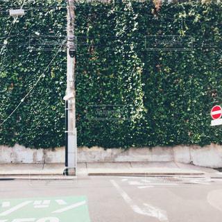 通学路の曲がり角の写真・画像素材[2795890]