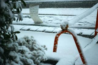 冬,雪,東京,道路,TOKYO,道,SNOW,winter,White,road,way,ホワイトカラー