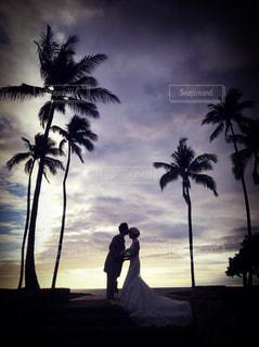 夏,ビーチ,青空,暑い,旅行,ハワイ,Hawaii,ワイキキ