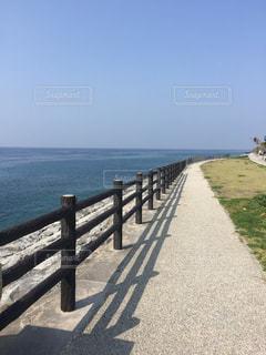 沖縄県名護市の名もなき道の写真・画像素材[1042559]