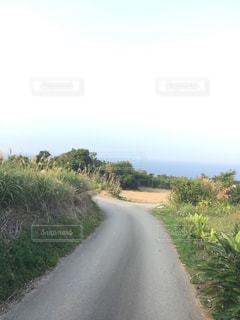 沖縄県古宇利島の生活道路の写真・画像素材[1042691]