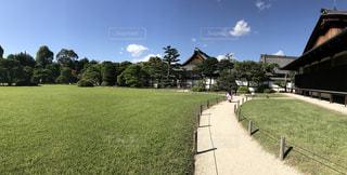 京都の二条城の庭園の写真・画像素材[1013767]