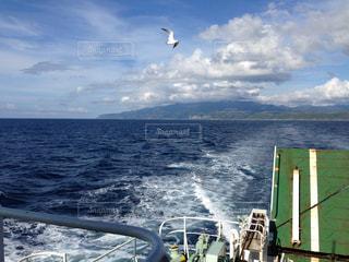 船に乗って離島への道中 カモメの見送りの写真・画像素材[986496]