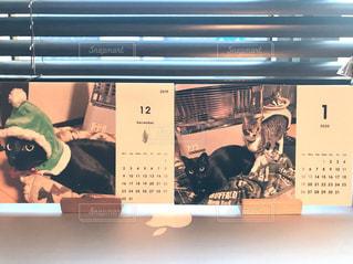 ペットのねこのオリジナルカレンダーの写真・画像素材[3013180]