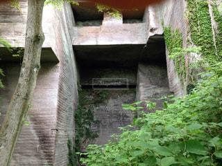 断崖絶壁の写真・画像素材[1407879]