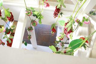 テーブルの上の花の花瓶の写真・画像素材[1595515]