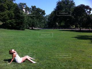 セントラルパークを独り占めの写真・画像素材[1003088]