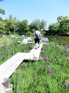 男性,自然,公園,後ろ姿,デート,休日の過ごし方,休日デート