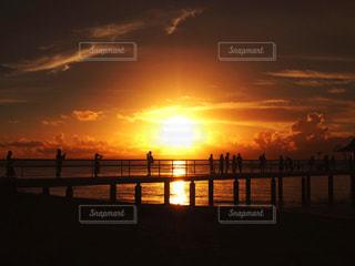 夕日に染まっての写真・画像素材[971296]