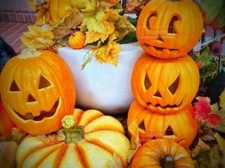 ハロウィンのかぼちゃの写真・画像素材[2499154]