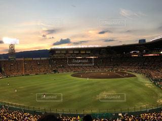 緑の芝生と大きなスタジアムの写真・画像素材[972225]