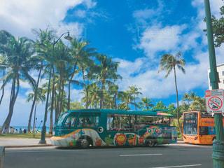 海,南国,ビーチ,綺麗,アメリカ,観光,樹木,旅行,ヤシの木,ハワイ,リゾート,ホヌ,トロリー