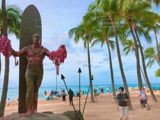 海,空,南国,サーフィン,サーフボード,ビーチ,綺麗,アメリカ,観光,樹木,旅行,ヤシの木,ハワイ,リゾート,ホヌ