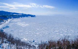 流氷の季節の写真・画像素材[1739430]