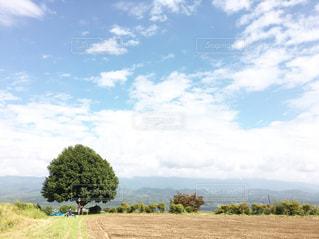 土と空と雲の写真・画像素材[977716]