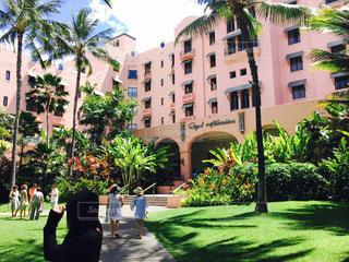 海外,ピンク,アメリカ,観光,癒し,旅行,Hawaii,色彩,美しさ,ホテル ロイヤルハワイアン
