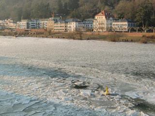 冬,白,氷,ドイツ,ホワイト,氷点下,ライン川,凍る