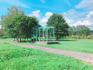 背景の木と大規模なグリーン フィールドの写真・画像素材[976775]