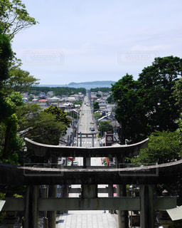 自然,空,夏,緑,神社,青空,散歩,鳥居,景色,休日,福岡,おでかけ,福岡県,散策