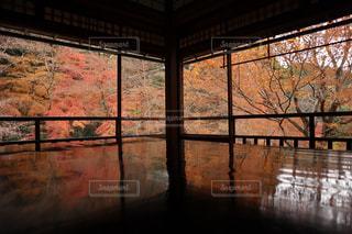 京都の写真・画像素材[991533]