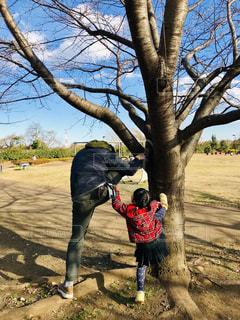 男性,子ども,2人,自然,風景,空,公園,木,屋外,親子,後ろ姿,女の子,人物,背中,人,後姿,日中,ストレッチ
