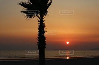 水の体に沈む夕日の写真・画像素材[1388280]