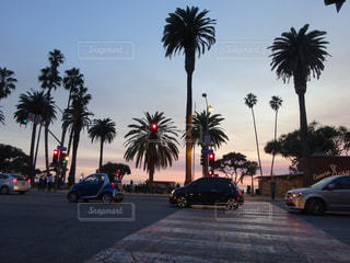 LA magicの写真・画像素材[981648]