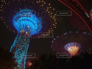 交通信号は夜ライトアップします。の写真・画像素材[1013817]