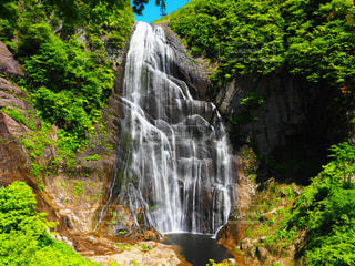 森の中の大きな滝の写真・画像素材[1449158]