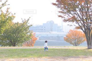 アウトドア,秋,散歩,川,子供,女の子,土手,休日,川沿い,1歳,おでかけ,お出かけ,外遊び,汐入公園