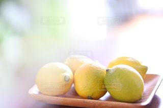 Lemonの写真・画像素材[1776936]