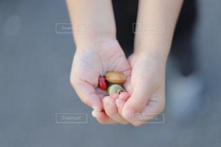 小さい秋の写真・画像素材[2820718]