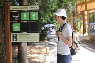 自然,公園,樹木,動物園,休日,お出かけ,ザグレブ