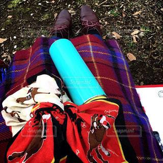 おにぎり,ピクニック,休日,お出かけ,水筒