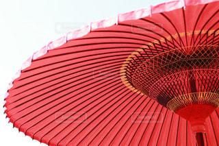 大きな赤い傘の写真・画像素材[1446842]